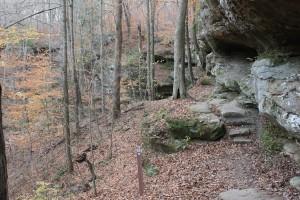 Hemlock Cliff1